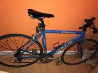 Blue Bulls Women's/Ladies Road Bike
