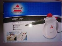 Steam Cleaner, Bissell