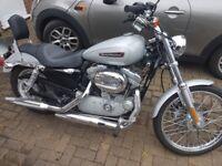2010 Harley Davidson XL883C for sale