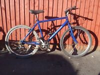 """Raleigh MAX 21"""" - 21 speed Bike/V-Brakes/Quick Release /Fully Serviced/30 Day Warranty"""