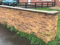 Pale coloured bricks