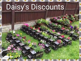 Extremely Popular Personalised Planters