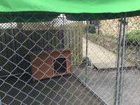 Dog pen and dog kennel for outside use.
