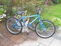 "Boys Raleigh Urban bike, 24"" alloy wheels, 14"" frame, 18 gears,"