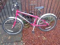 Islabike Bienn 20 Large pink