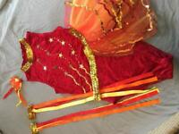 Beautiful red and gold dancing costume
