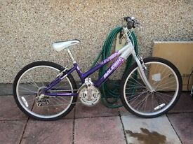 Kids Raleigh Bike.
