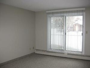 *INCENTIVES*Bachelor w/ Patio in Spotless Central Adult Bldg ~33 Edmonton Edmonton Area image 3