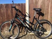 Women's/Girls Raleigh waterfront bike