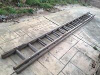 Extendable wooden double ladder