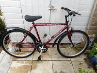 mans burgundy 20 inch frame falcon bike with lock