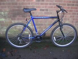 Pair of Mountain Bikes for sale