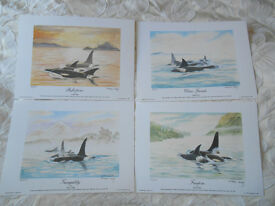 Set of Four Limited Edition Prints of Orcas by Fraser May (Signed by Artist)