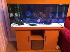 4 ft Juwel Aquarium
