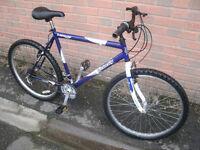 Dunlop Velocity Mountain Bike