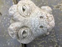 Garden Stone Ornament Big Baby Dragon Used