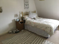 Room to rent in Clifton two bed flat