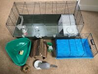 Selling 2 rabbit cages (1 large /1 small) food , products and accessories