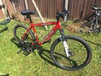 Specialized rockhopper mountain road bike bicycle