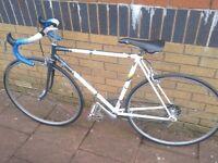 RALEIGH RAPIDE BIKE CYCLE RACER 18-23 1980s Quality Racing Bicycle