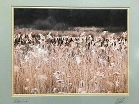 Colin Baxter prints. Signed and framed.