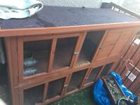 Large Rabbit hutch for sale. Very good condition (bought new 5 months ago)