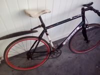 Specialized Langster single speed / fixed gear, 54 cm.