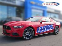 2015 Ford Mustang Coupe GT