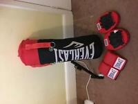 everlast punchbag, wall/ceiling bracket, gloves and pads, never used