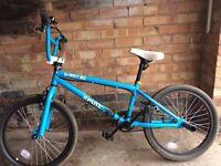 Blue BMX Xrated Spine Bike