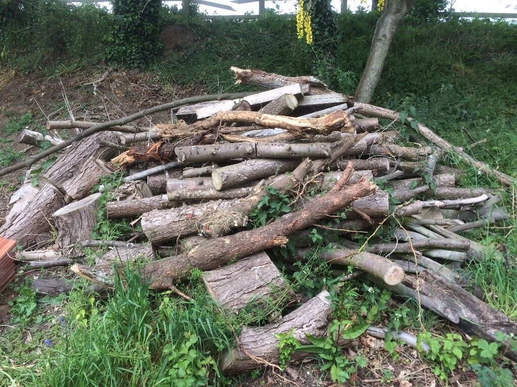 Firewood logs for salein Beccles, SuffolkGumtree - Nice Large pile of logs firewood for sale collection only Beccles Suffolk £60 o n o
