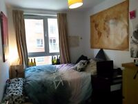 Lovely double bedroom in an amazing flat
