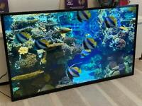 "49"" FULL HD FREEVIEW SLIM LED TV"
