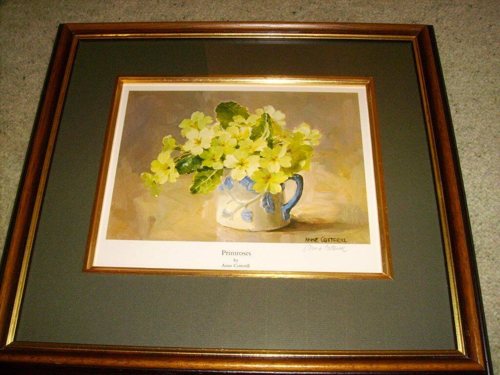 Anne Cotterill - signed framed print - top quality - very