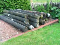 Timber Lamposts