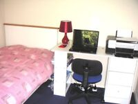Bright room 15 mins walk to UH College Lane campus, 20 mins to Galleria, 2 mins to local shops