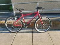Red Carrera Mountain Bike