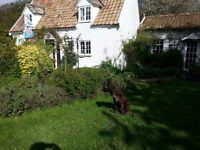 Wonderful Wild Rose Cottage: Monday to Friday Let or BB ... Ideal for business person