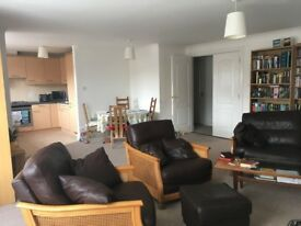 Double room in lovely flat in Shawlands
