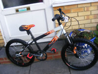 """RALEIGH BOYS 20"""" WHEEL BIKE BEEN HARDLY USED GREAT CONDITION AGE 7+"""