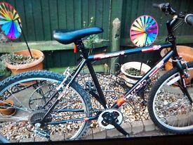 Brand new mountain bike needs very slight attation
