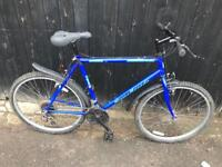 """Universal 21"""" Frame Mountain Bike. Fully Serviced. Free Lock, Lights & Local Delivery. Warranty"""