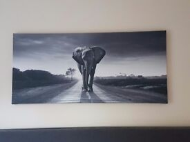 Large elephant canvas