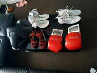 Boxing equipment.shoes .gloves .bools vital protection