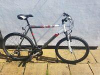 Raleigh Men's Mountain Bike