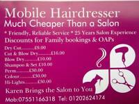 Mobile Hairdresser Mobile Stylist Hair Dresser