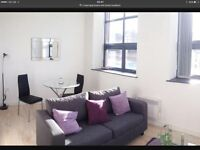 ***1 bedroom luxurious apartment working proffessionals ***