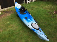Perception triumph 13 kayak