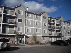 Now Renting for February 2018! Security Deposit only $299