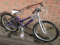 Raleigh Activ Girls Mountain Bike